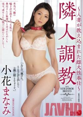 JUY-099 Studio MADONNA Neighbor Torture – Female Dog Of Service Married Woman Has Been Taught – Manami Kobana