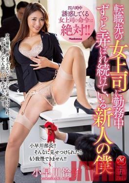 JUL-253 Studio Madonna - My Female Boss Tries To Seduce Me All Day At My New Job - Reiko Kobayakawa